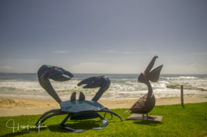 Crab and pelican sculpture by the sea, made by Nambucca High students