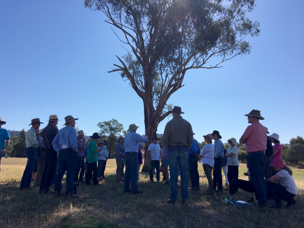 grants available for community-led initiatives that build drought resilience